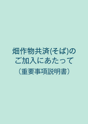NOSAI畑作物共済(そば)(重要事項説明書)